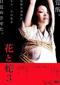 Cartel de cine erótico 2010