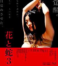 Cartel de cine erótico Japonés